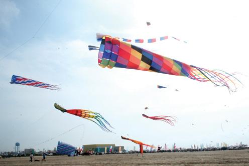 Kite Fest pic2