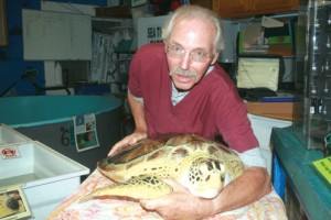 Turtle Days1