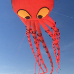 SPI Kite Fest