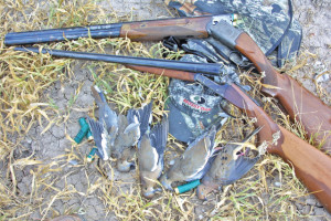 Great Outdoors pic2-2-28-13