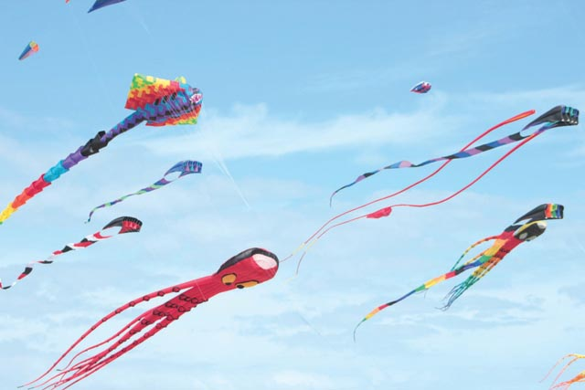Various kites of all shapes, sizes and colors are pictured at the 13th Annual SPI Kite Fest, held Feb. 2-4 at South Padre Island on the flats just north of the Convention Centre. (Staff photos)