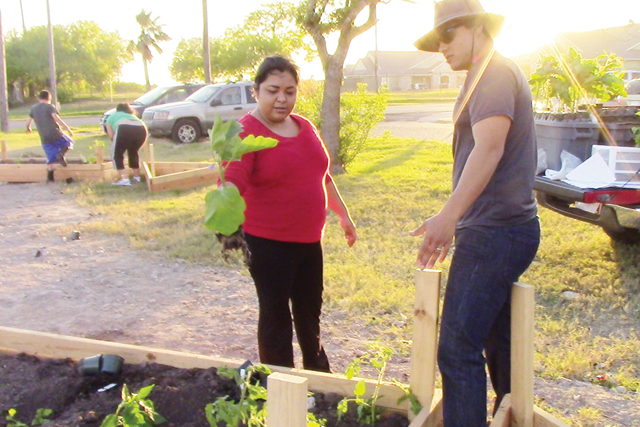 (Photo by Abbey Kunkle) Shown are several volunteers maintaining the Port Isabel Community Garden.