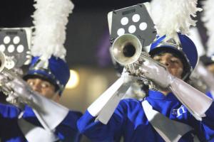 Silver Tarpon Drum Line Report Monday