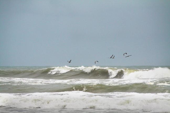 North Padre Island Beach Conditions