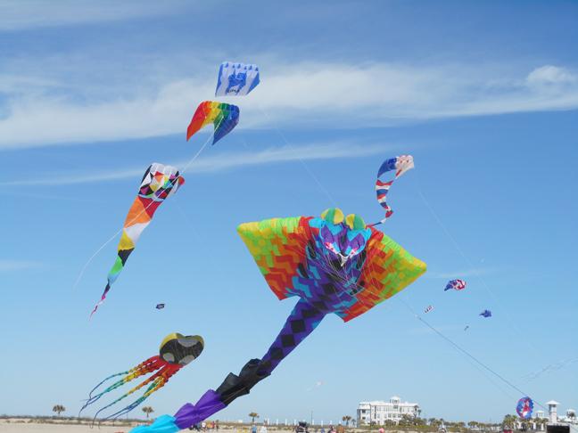 KiteFestWEB