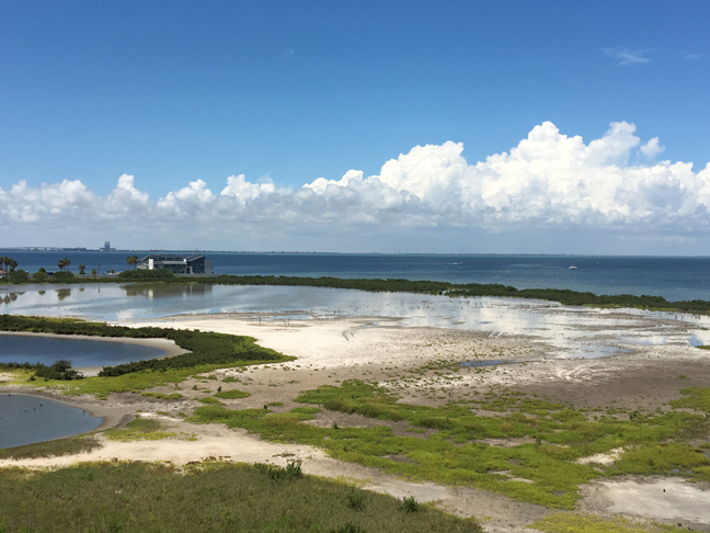 spring tide on the salt flatWEB