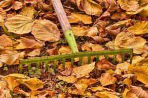 Perfect planting season is upon us